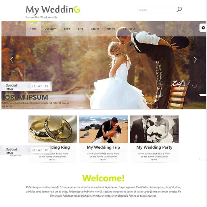 Wedding - 36+ Elegant Free WordPress Wedding Themes [year]