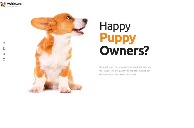 Welsh-Corgi - 36+ Awesome Minimalist WordPress Themes [year]