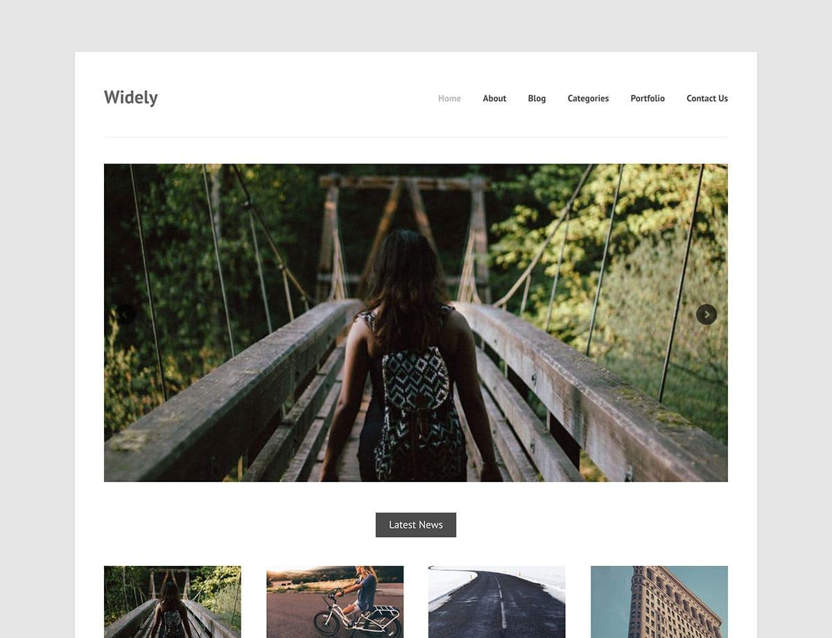 Widely - 46+ Nice Free WordPress Portfolio Themes [year]