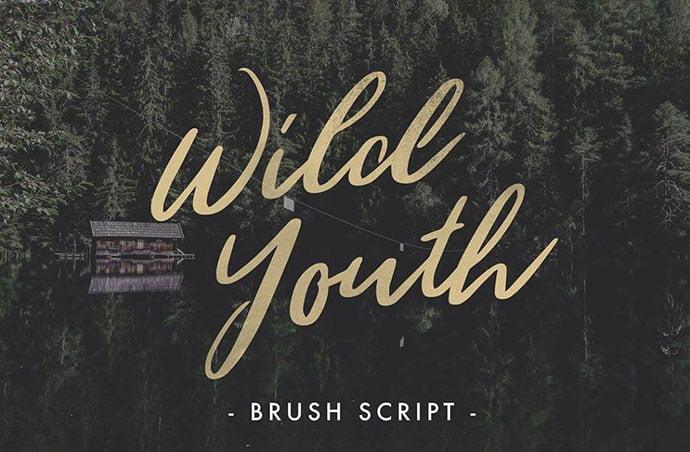 Wild-Youth