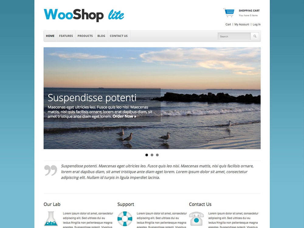 WooShop-Lite - 51+ Awesome Free WordPress Themes For Ecommerce [year]