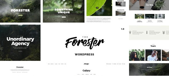 WordPress-Minimalist-Portfolio-Theme - 36+ Awesome Minimalist WordPress Themes [year]