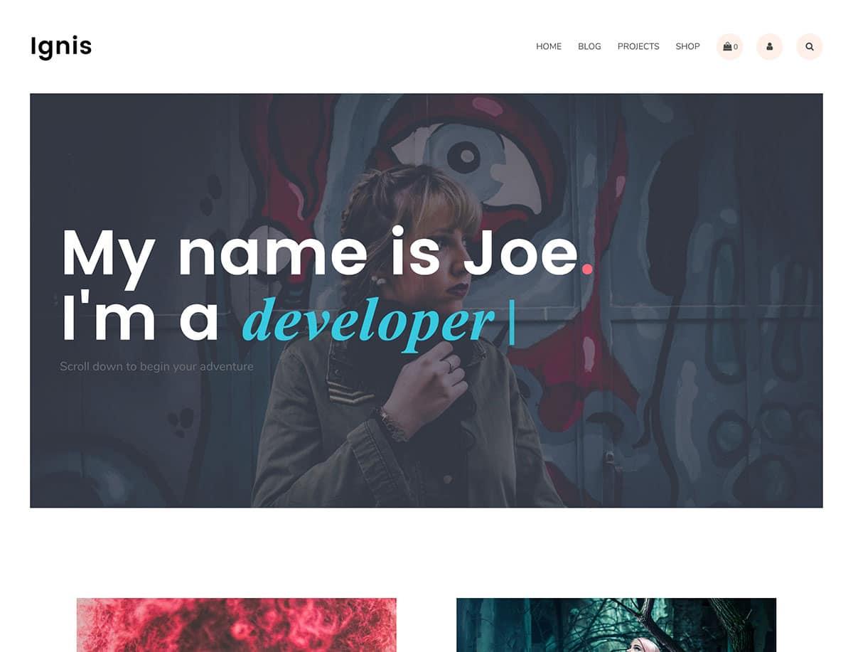 WordPress-Portfolio-Themes - 46+ Nice Free WordPress Portfolio Themes [year]