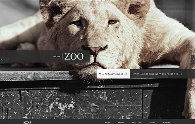 Zoo - 41+ Amazing WordPress Parallax Themes For You [year]