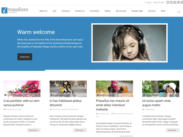 i-Transform - 51+ Awesome Free WordPress Themes For Ecommerce [year]