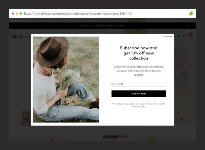 111 - 36+ Important WordPress Ecommerce Themes For Popup Designs [year]
