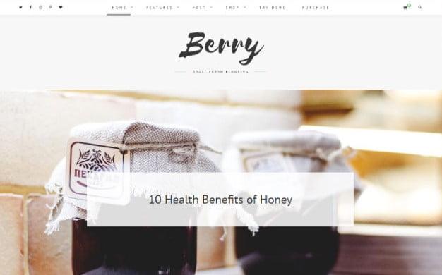 Berry - 37+ Nice WordPress Photography Blog Themes [year]