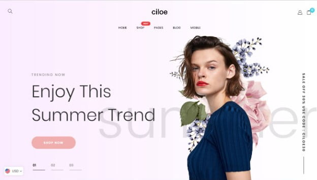 Ciloe - 35+ Friendly Responsive Dropshipping Shopify Theme [year]