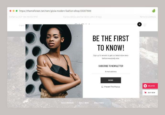 Gioia - 36+ Important WordPress Ecommerce Themes For Popup Designs [year]