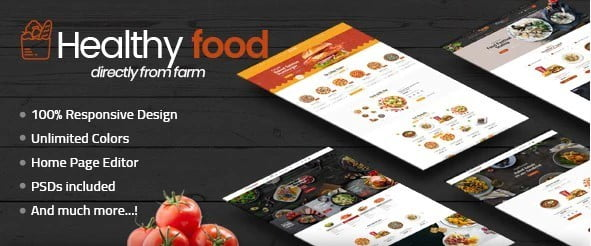 HealthyFood - 36+ Important WordPress Ecommerce Themes For Popup Designs [year]