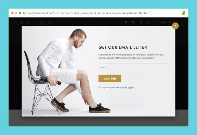 Hermes - 36+ Important WordPress Ecommerce Themes For Popup Designs [year]