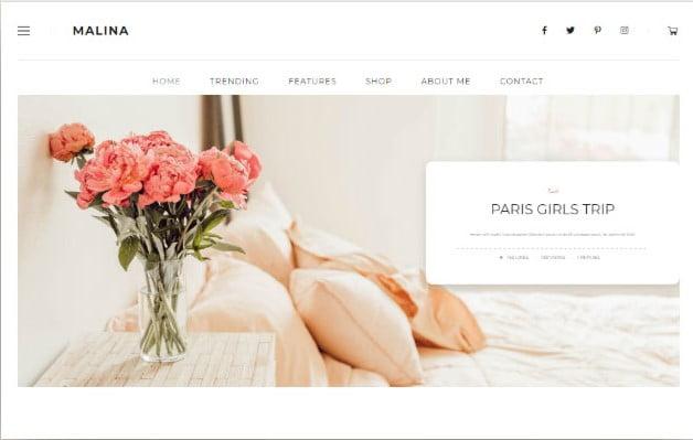 Malina - 37+ Nice WordPress Photography Blog Themes [year]