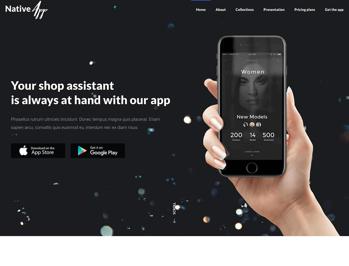 Native - 40+ Nice WordPress Themes For App Showcase [year]
