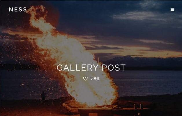 Ness - 37+ Nice WordPress Photography Blog Themes [year]