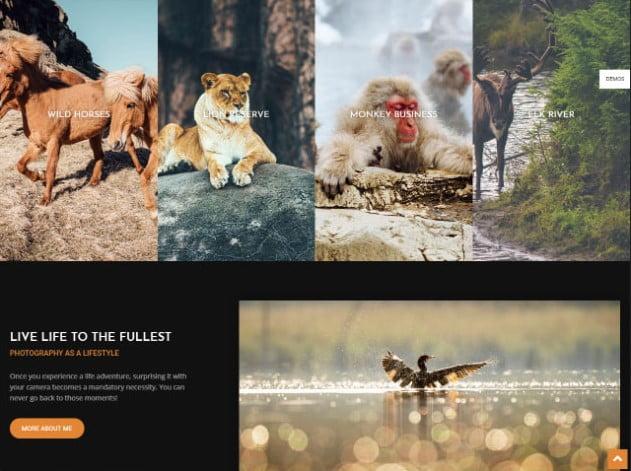 Newspaper - 37+ Nice WordPress Photography Blog Themes [year]