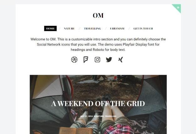 OM - 37+ Nice WordPress Photography Blog Themes [year]