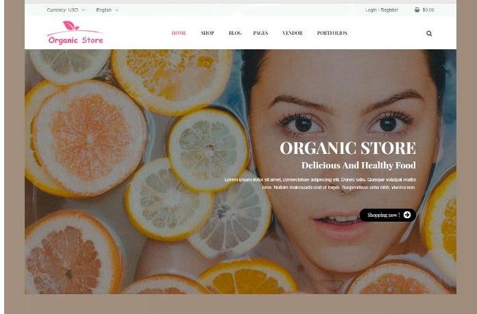 Ordo - 51+ Awesome WordPress Lookbook Ecommerce Themes [year]