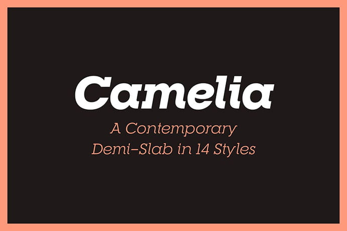 RNS-Camelia