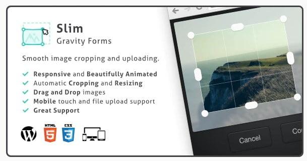 Slim-Image-1 - 25+ Important WordPress File Uploader Plugins [year]