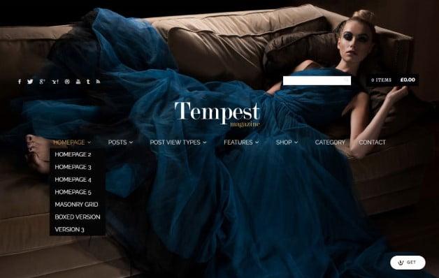 Tempest - 37+ Nice WordPress Photography Blog Themes [year]