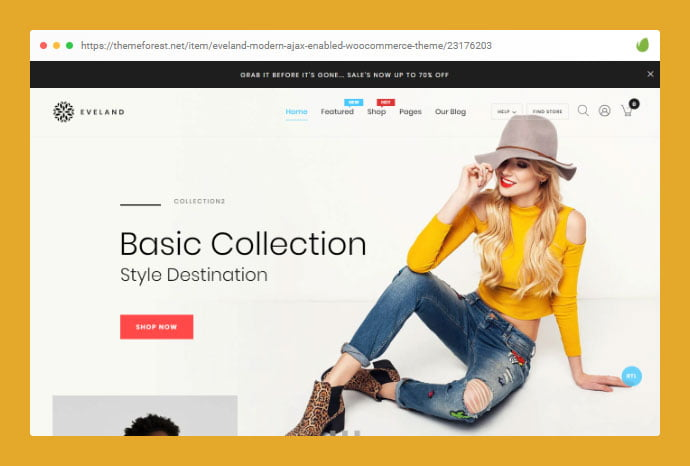 hgh - 32+ Impressive WordPress Boutique Ecommerce Themes [year]