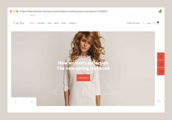 wordpress-boutique-themes-6 - 32+ Impressive WordPress Boutique Ecommerce Themes [year]