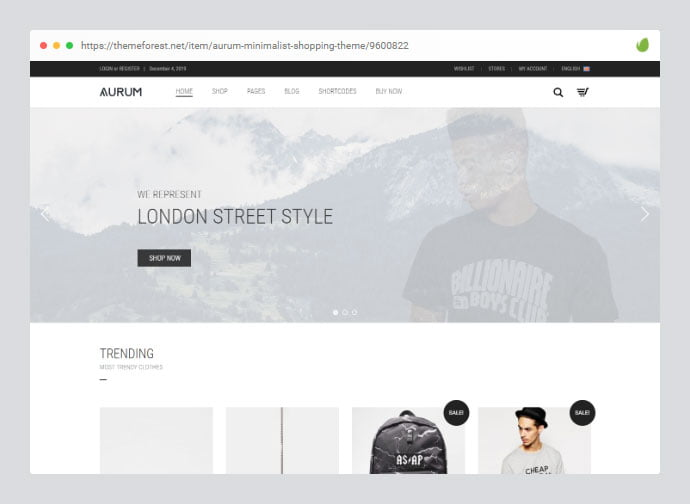 Aurum - 33+ Awesome Super Fast Website WordPress Themes [year]