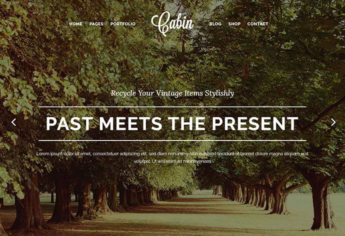 Cabin - 32+ Impressive Retro Cool WordPress Themes [year]