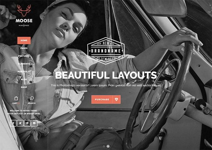 Moose - 32+ Impressive Retro Cool WordPress Themes [year]