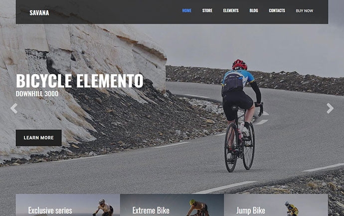 Savana - 29+ Best Bike Store Responsive WordPress Themes [year]