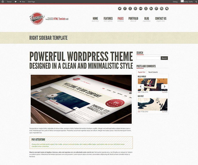 Tensor - 32+ Impressive Retro Cool WordPress Themes [year]