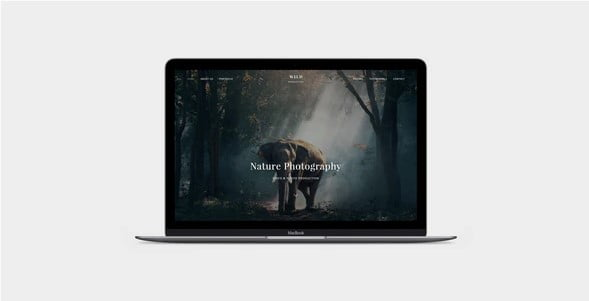 WILD - 35+ Nice Videographers & Cinematographers WordPress Themes [year]