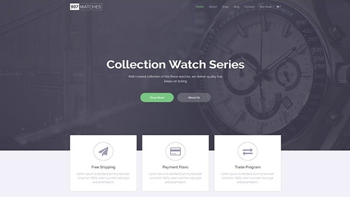 907-1 - 34+ Top Online Watch Shop WordPress Themes [year]