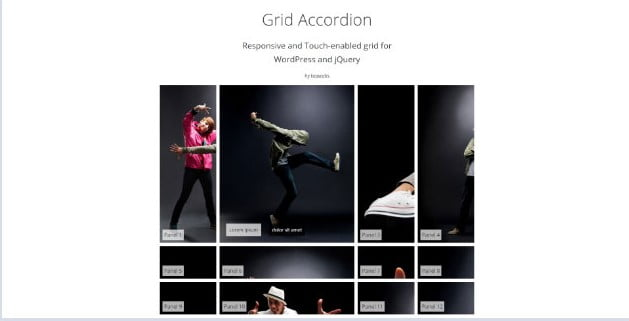 Accordion - 28+ Essential Grid Layout WordPress Plugins [year]