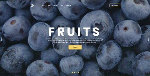 Agricom - 39+ Best Fruit & Vegetable WordPress Themes [year]