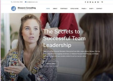 Consulting - 35+ Free WordPress Blossom Themes and Templates [year]