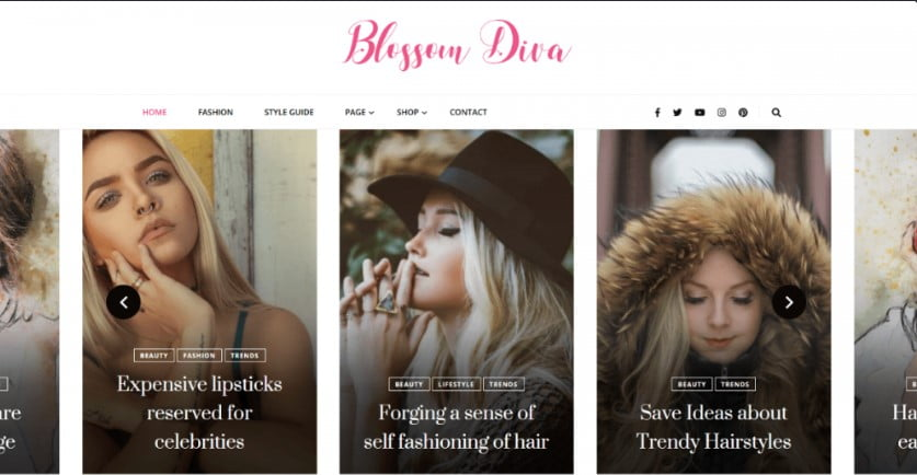 Diva-1 - 35+ Free WordPress Blossom Themes and Templates [year]