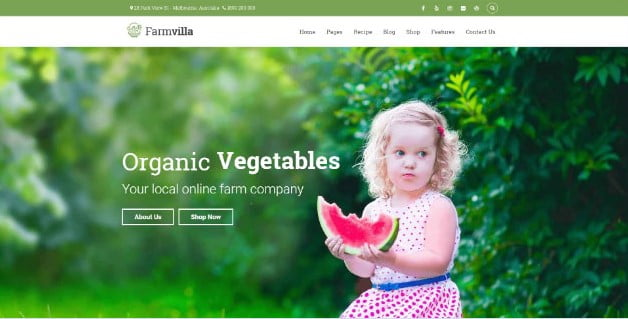 Farmvilla - 39+ Best Fruit & Vegetable WordPress Themes [year]