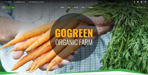 GoGreen - 39+ Best Fruit & Vegetable WordPress Themes [year]
