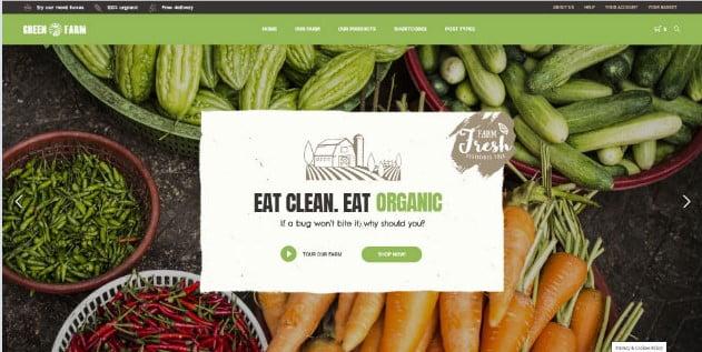 Green-Farm - 39+ Best Fruit & Vegetable WordPress Themes [year]