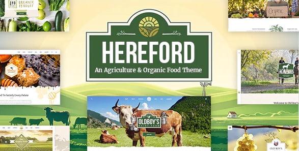 Hereford - 39+ Best Fruit & Vegetable WordPress Themes [year]