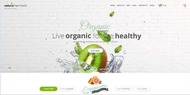 Naturix - 39+ Best Fruit & Vegetable WordPress Themes [year]