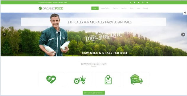 Organic-Food - 39+ Best Fruit & Vegetable WordPress Themes [year]