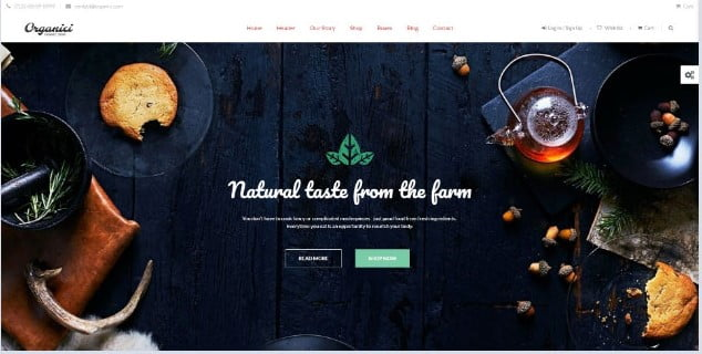 Organici - 39+ Best Fruit & Vegetable WordPress Themes [year]