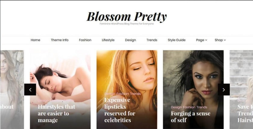 Pretty - 35+ Free WordPress Blossom Themes and Templates [year]