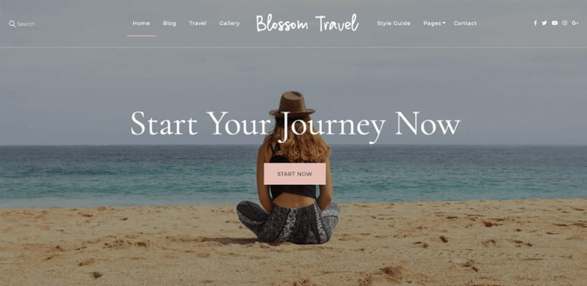 Travel - 35+ Free WordPress Blossom Themes and Templates [year]