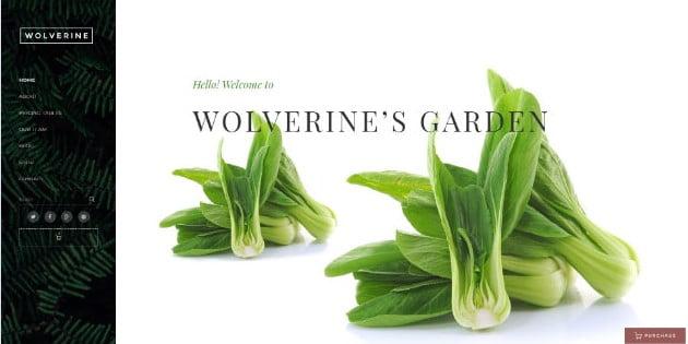 Wolverine - 39+ Best Fruit & Vegetable WordPress Themes [year]