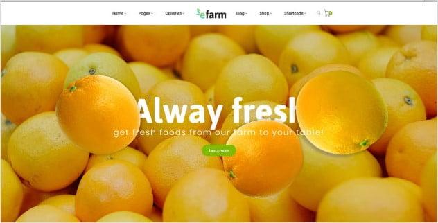 eFarm - 39+ Best Fruit & Vegetable WordPress Themes [year]