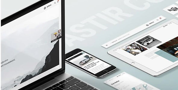 Astir - 37+ Awesome Actors WordPress Themes [year]