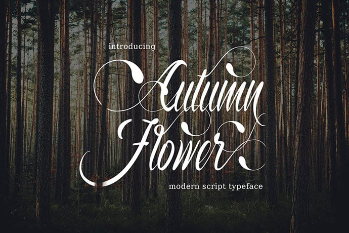 Autumn-Flower - 53+ Nice T-shirt Design Hand Lettering Fonts [year]